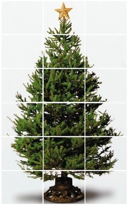 tree_resized.jpg